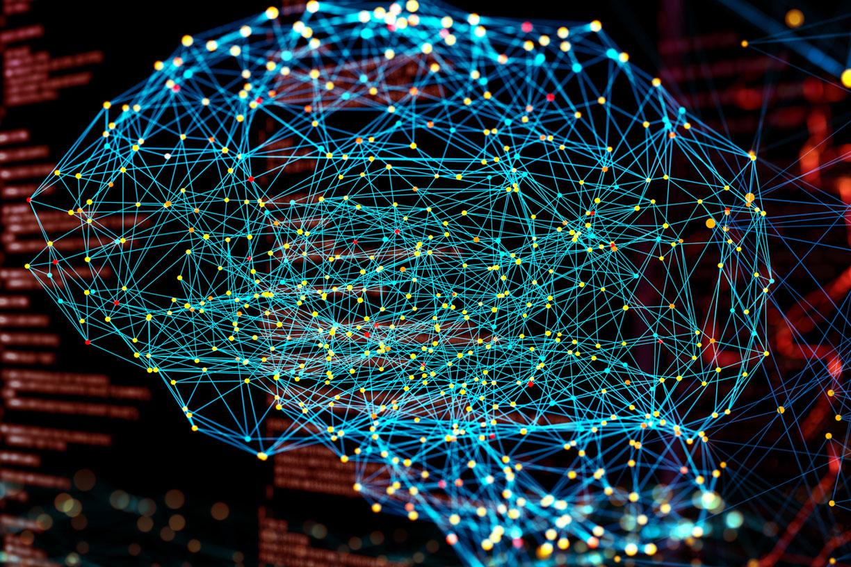 brain network image
